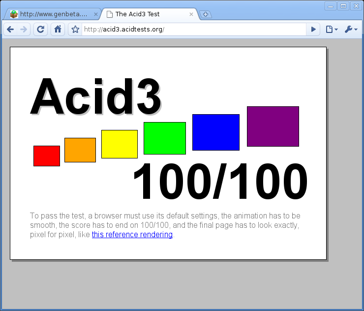 Pantallazo-The Acid3 Test - Google Chrome